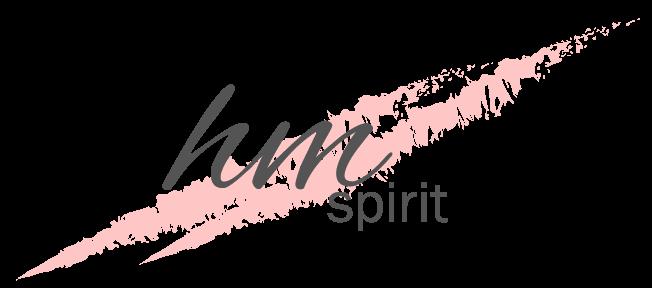 hm spirit logo